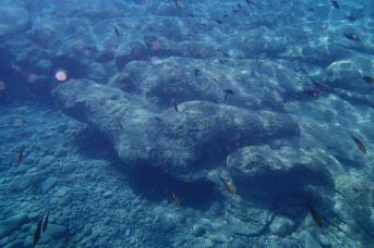 Swimming off Mojitos Beach