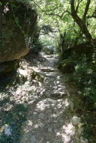 The pilgrims walk up to Meteora