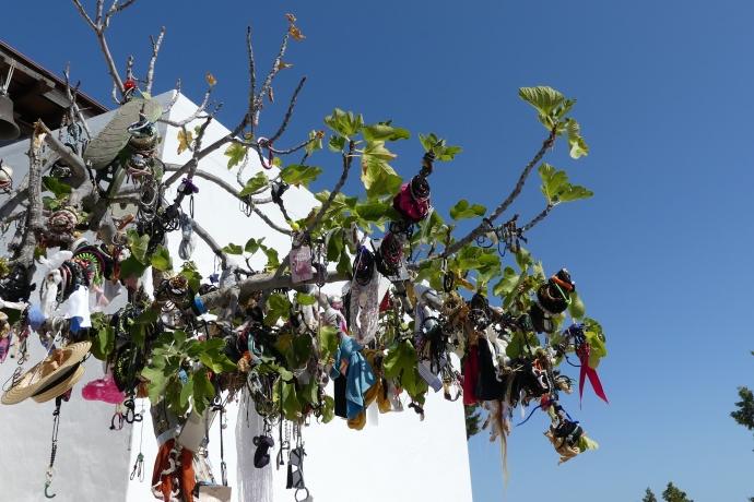 The charm tree at Tsambika