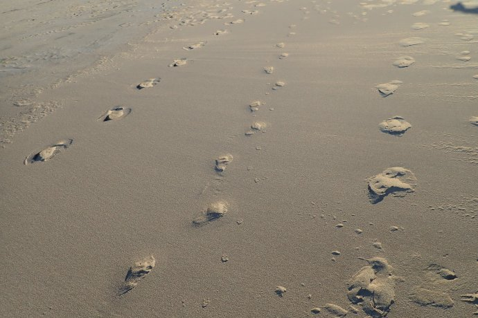 Curious optical effect of the evening sun of raised footprints in the sand