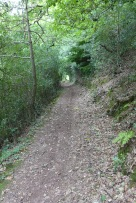 The footpath to Dunster