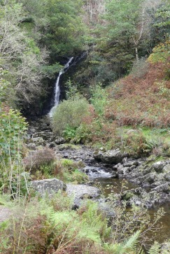 Grey Mares Tail Nature Reserve