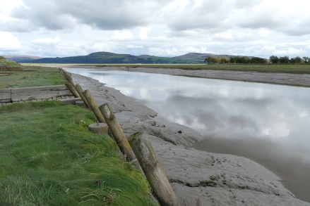 Wigtown estuary
